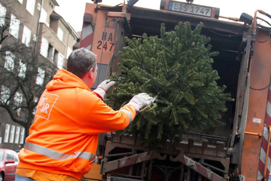 Ein Mitarbeiter der Berliner Stadtreinigung entsorgt einen alten Weihnachtsbaum.