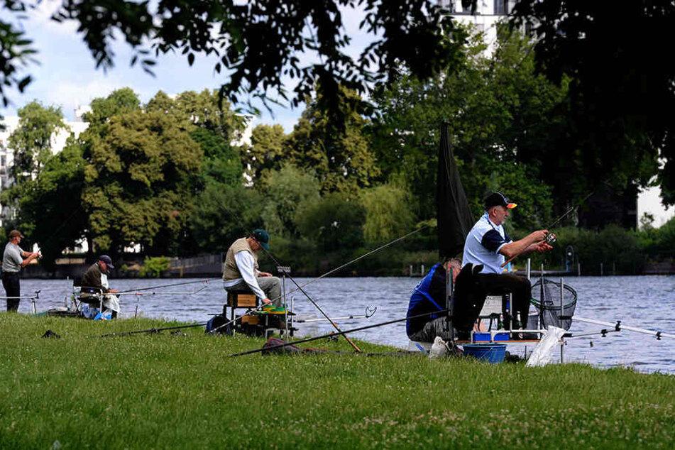 Angeln in Berlin ist eine feine Sache, wie hier im Treptower Park am Ufer an der Spree.