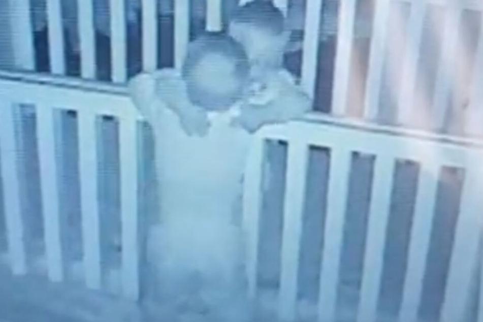 Streithähne in der Nacht vereint: Jacob und Noah (beide 18 Monate) haben sich doch ganz lieb.