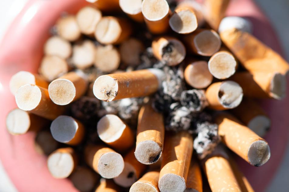 Zahlreiche Zigarettenstummel liegen in einem Aschenbecher. Oft landen die Kippen in der Umwelt und richten dort Schaden an.
