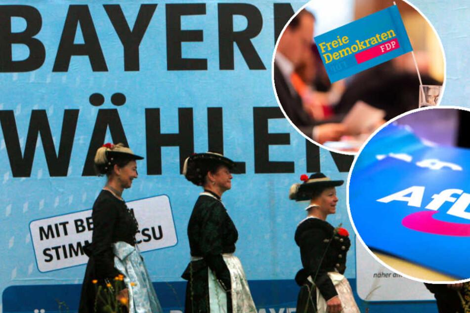 Wahl-Umfrage Bayern: FDP sackt ab, AfD erschreckend hoch