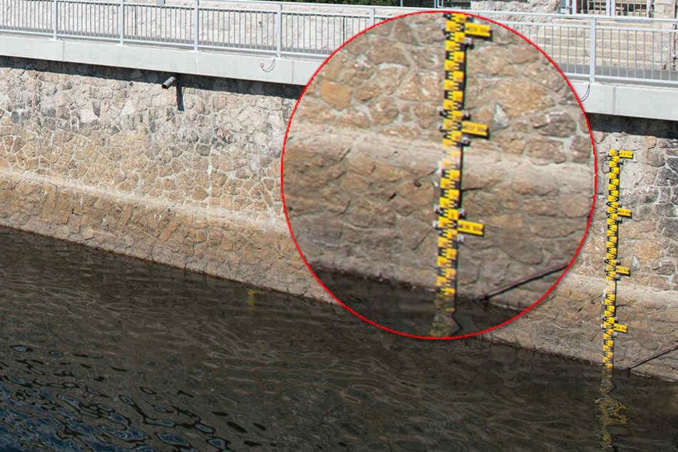 Talsperre Eibenstock hat einen niedrigen Wasserstand zu beklagen.