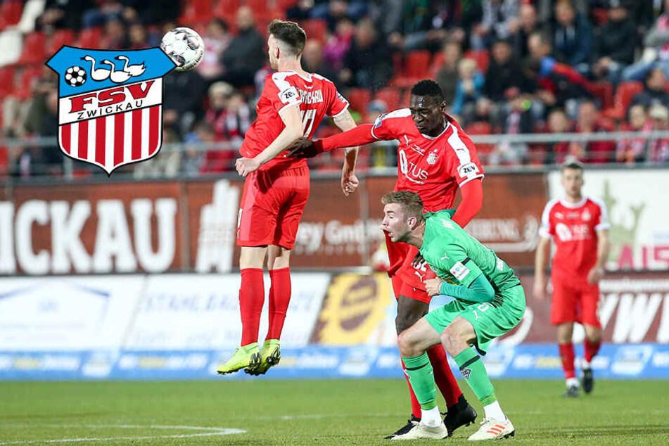 FSV Zwickau will heute gegen Energie voll auf Sieg spielen!