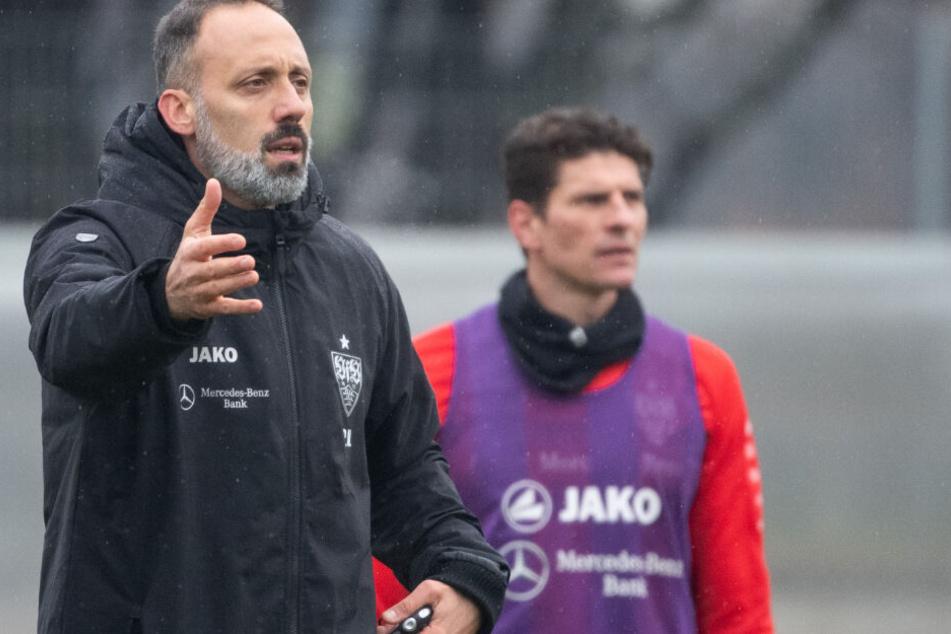 Pellegrino Matarazzo (links) war mit der Vorbereitung in der Winterpause sehr zufrieden.