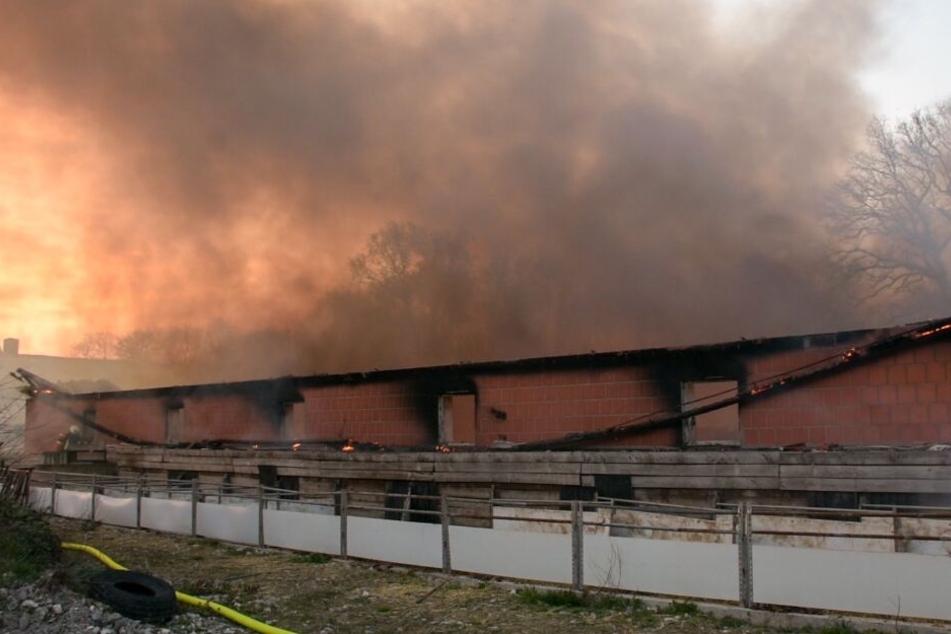 Der Sachschaden des Brandes wird auf circa 500.000 Euro geschätzt.