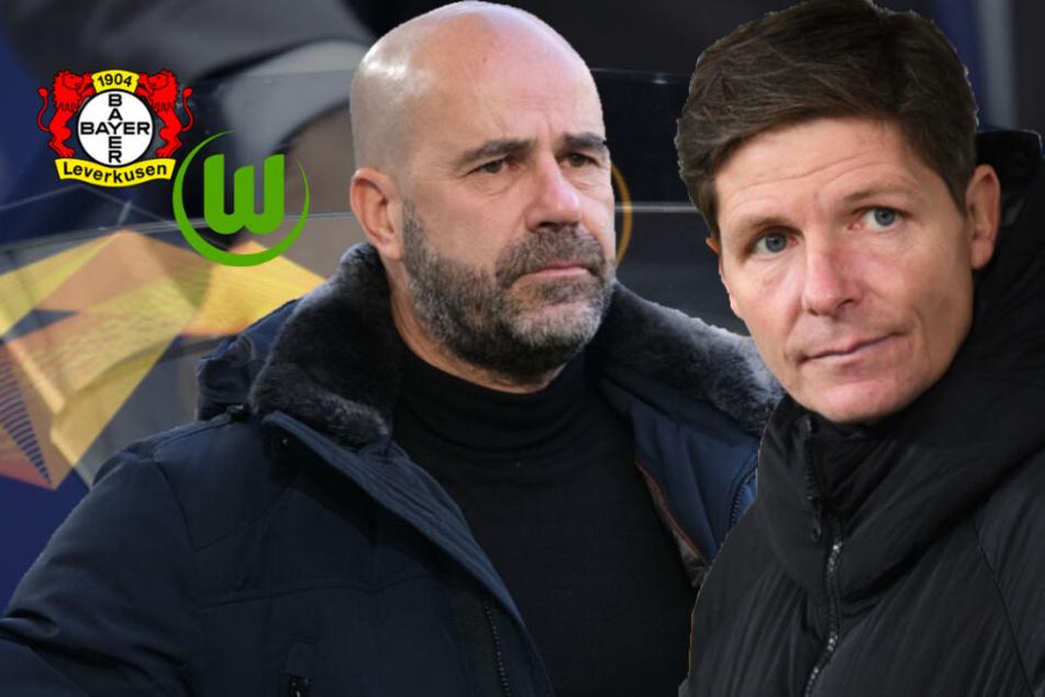 EL-Auslosung: Leverkusen trifft auf Top-Klub, Wolfsburg mit machbarer Aufgabe