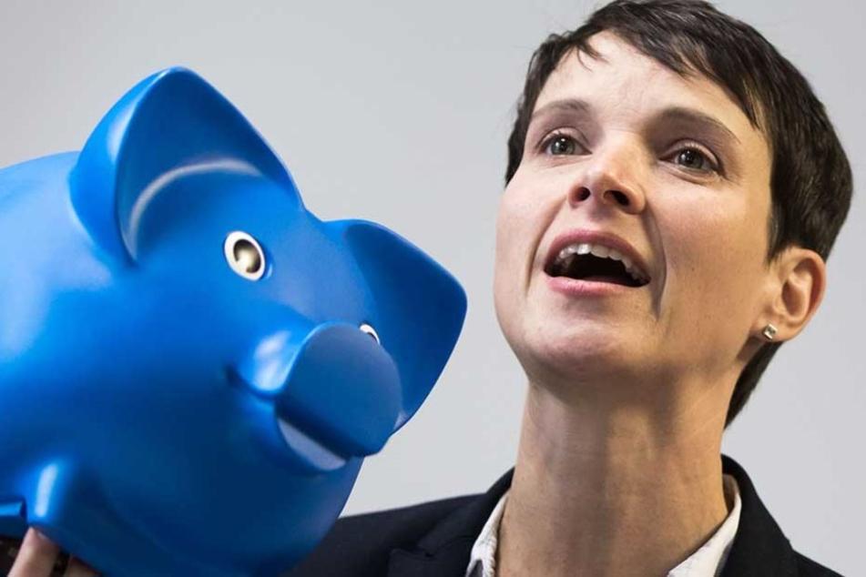 Frauke Petry dürfte von Neuwahlen nicht sonderlich begeistert sein.