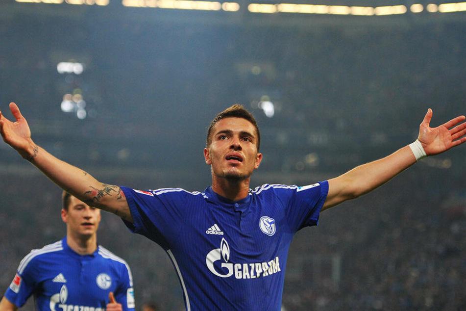 Der Ex-Schalker Roman Neustädter ist ebenfalls neu bei Dynamo Moskau.