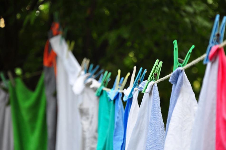 In der Wohnung des Diebes wurden noch mehr Damenkleidungsstücke gefunden.