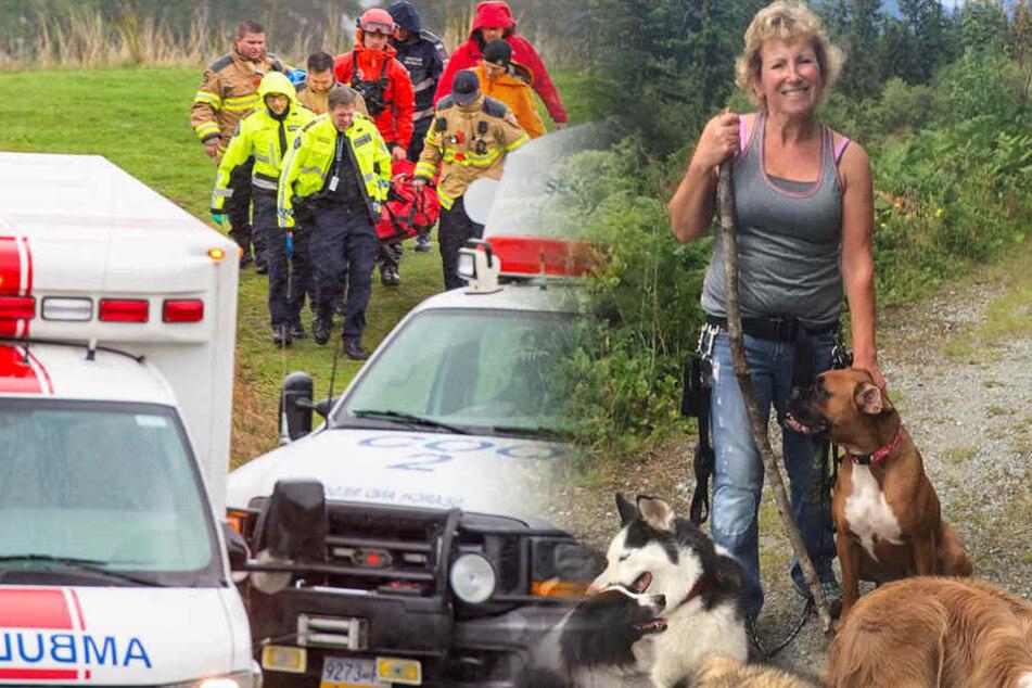 Hunde helfen verletzter Frau, über zwei Tage in der Wildnis zu überleben