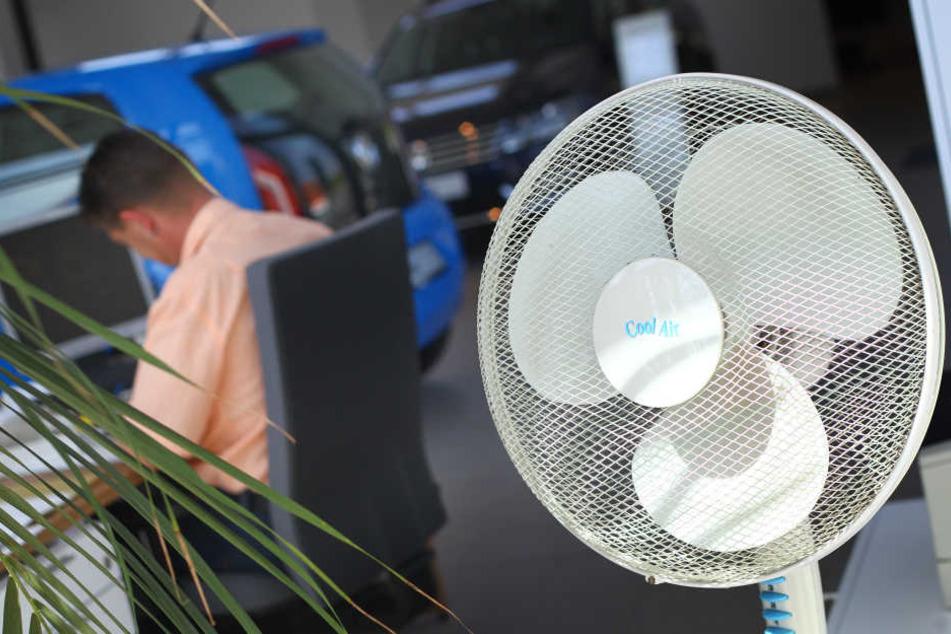 Sind Ventilatoren Krankmacher?