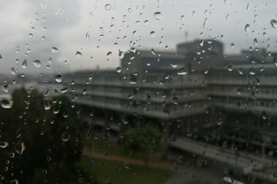 Regentropfen laufen an einer Fensterscheibe am Hamburger Hafen herunter.
