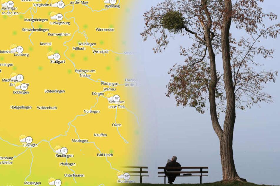 Mild aber grau wird es am Wochenende. (Fotomontage/Symbolbild)