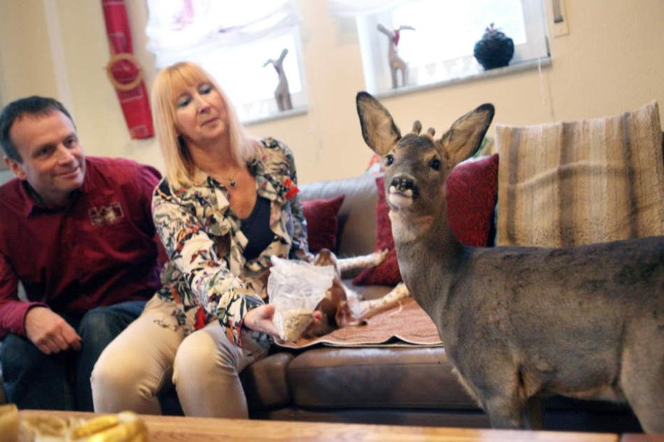 """Seit letztem Sommer, wohnt """"Bambi"""" bei dem Paar in Groß-Zimmern."""
