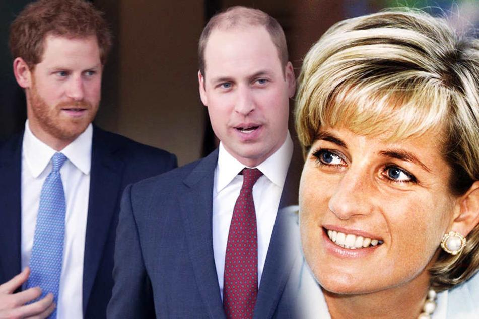 Harry, William und Diana: Sie beiden Söhne bereuen das letzte Telefongespräch mit ihrer Mama.