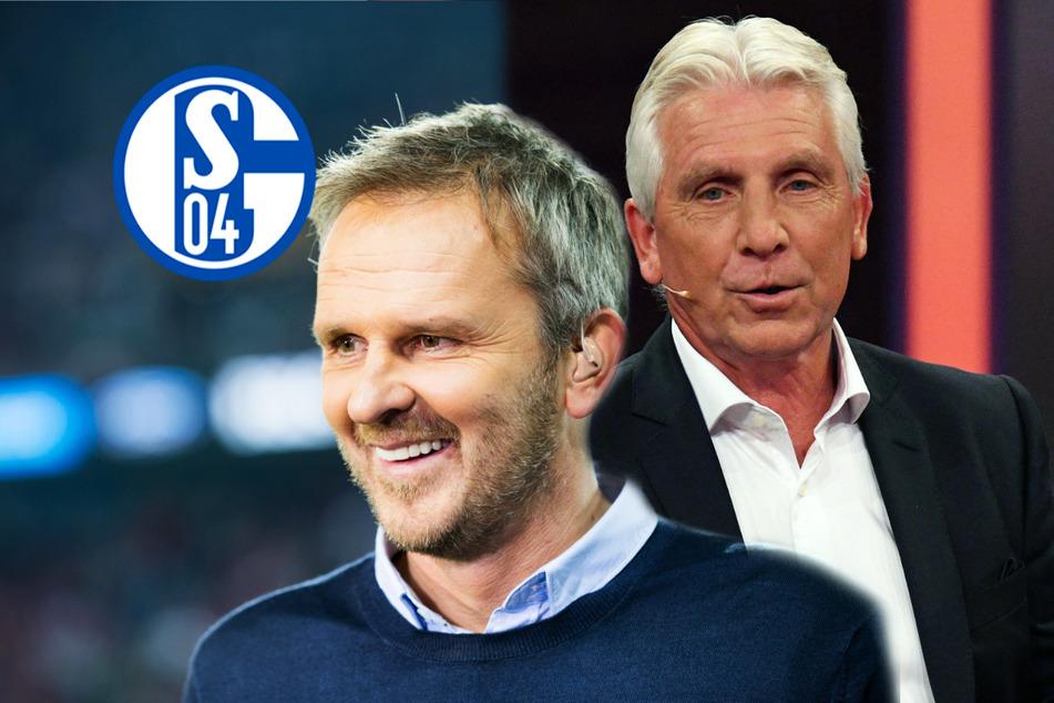 """Schalke 04 wird weiter harsch kritisiert: """"Katastrophe"""", """"link und hinterhältig""""!"""
