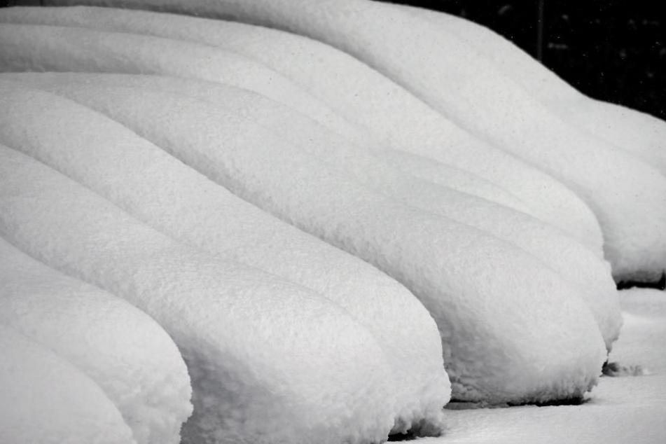 Schneebedeckte Autos: Es wird in Bayern voraussichtlich auch noch weiter schneien.