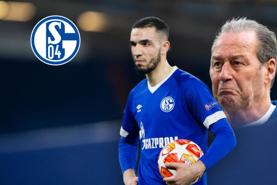 """Bentaleb hetzt über """"Höllen-Zeit"""" auf Schalke, Stevens kontert: """"Er hat uns alle enttäuscht!"""""""