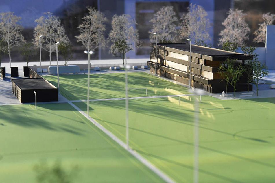 So könnte das neue Trainingszentrum im Ostragehege aussehen.