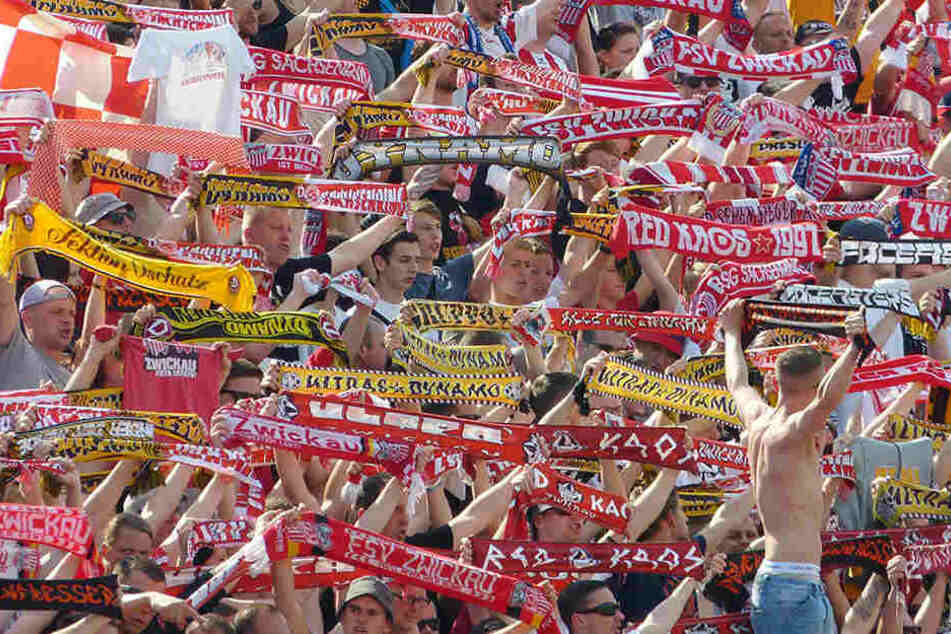 Rot-weiße und schwarz-gelbe Schals gemeinsam in einem Block - Zwickauer und Dresdner Fans verstehen sich gut. Nun wollen sie den FSV beim Ostderby in Erfurt gemeinsam unterstützen.
