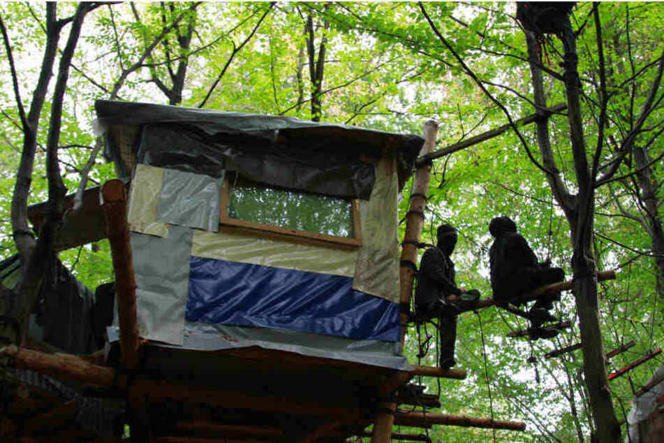 Aktivisten warten auf die Räumung der Baumhäuser.