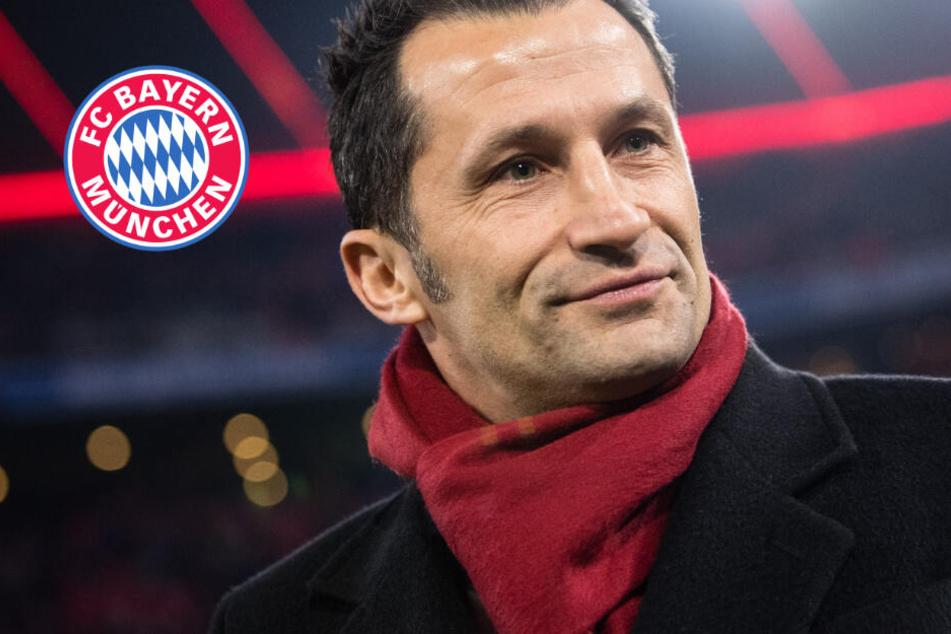 Nachteil durch Altersgrenze? FC-Bayern-Direktor Salihamidzic erklärt, worauf es ankommt