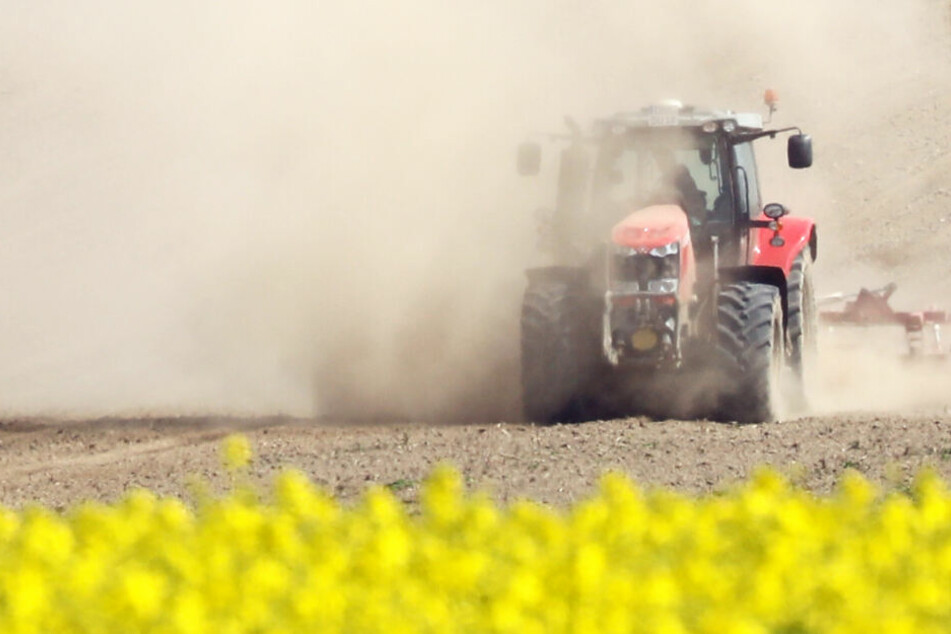 Ein Landwirt hat in Hammoor eine Leiche entdeckt. (Symbolfoto)