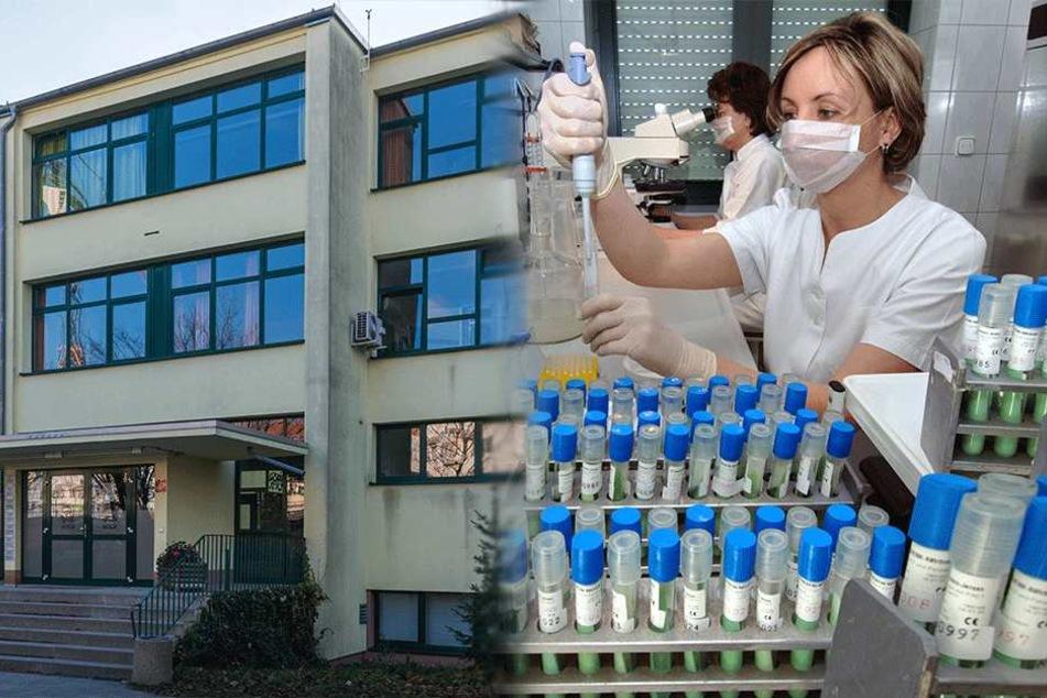 Mindestens zwölf neue Fälle: Tuberkulose-Gymnasium kommt nicht zur Ruhe