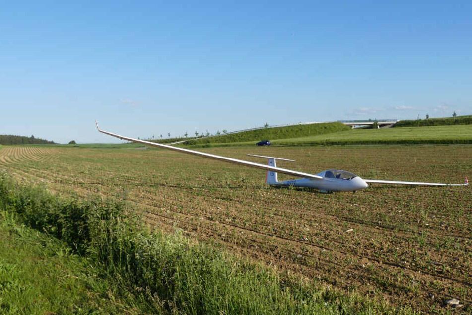 Der Pilot des Segelfliegers musste wegen fehlender Thermik auf dem Maisfeld notlanden.