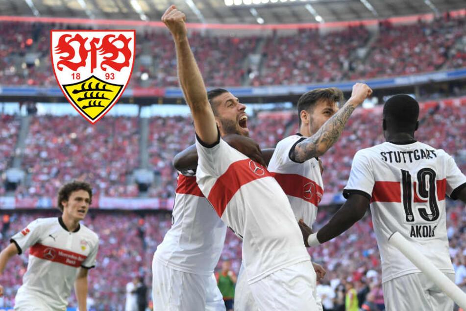 Fußball-Hammer: Kickt der VfB bald in der Europa League?