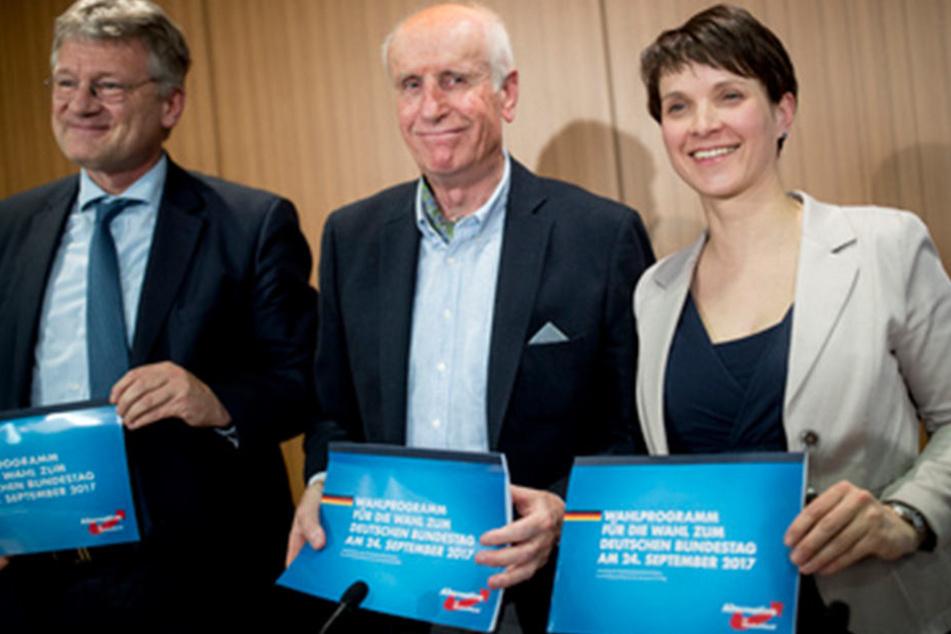 Jörg Meuthen, Albrecht Glaser und Frauke Petry (v.l.n.r.) stellen das Wahlprogramm der Afd für die Bundestagswahlvor.