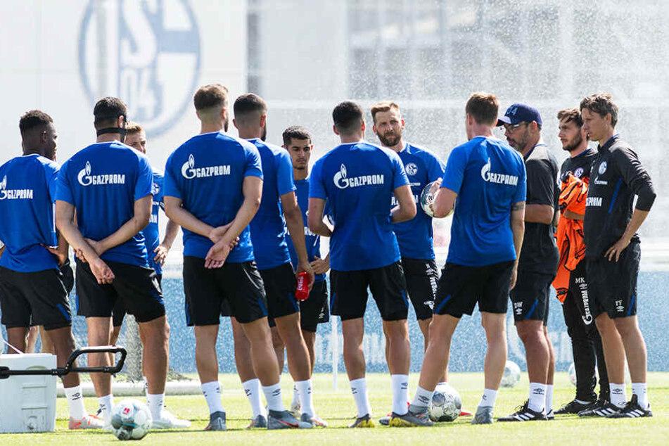 Kommt Schalke in Fahrt, ist die Qualifikation für den europäischen Wettbewerb im Bereich des Möglichen.