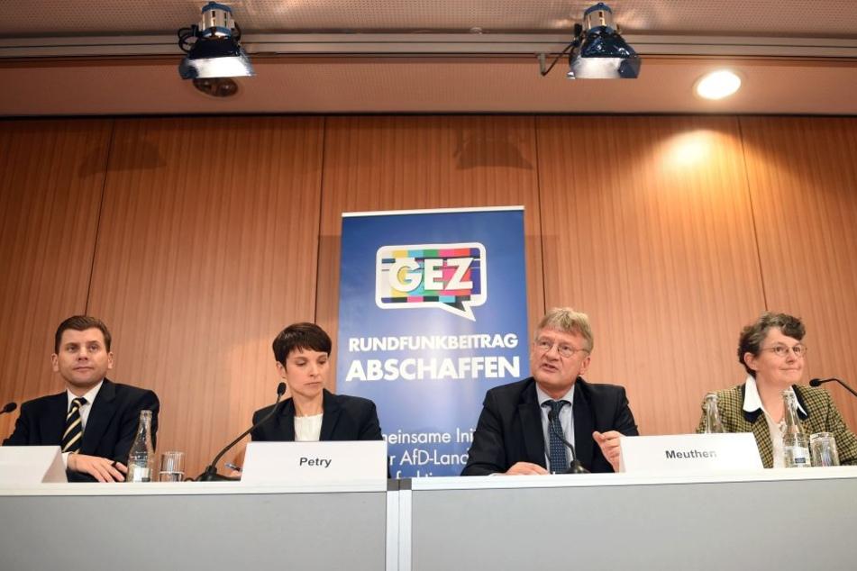 AfD-Pressesprecher Christian Lüth (l-r), dieAfD-Bundesvorsitzenden Frauke Petry und Jörg Meuthen sowie die fachpolitische Sprecherin, Kirsten Muster bei der Pressekonferenz in Berlin.