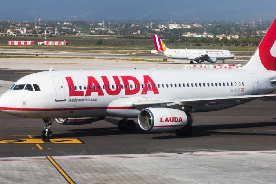 Airlines wie die österreichische Laudamotion bieten teilweise Flüge für unter 30 Euro an.
