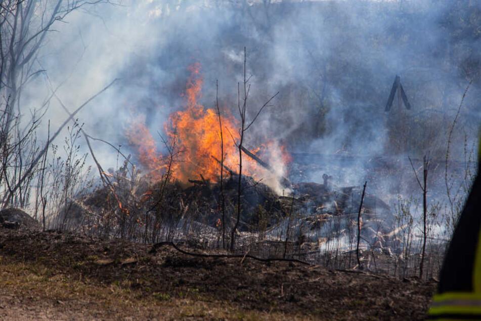 Das Feuer war wahrscheinlich durch einen Funken entstanden, zog sich bis zum angrenzenden Wald.