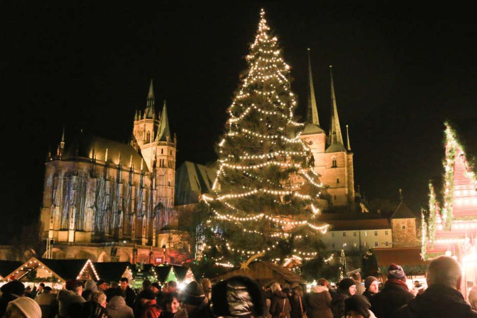 Bvb Weihnachtsbaum.Rupfi Begeistert Erfurter Weihnachtsbaum Wird Zum Internet Star
