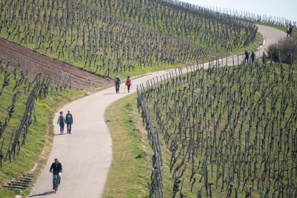 Die Baden-Württemberger bewegen sich mehr in Corona-Zeiten.