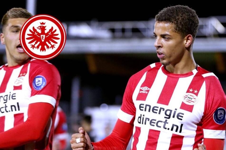Eintracht jagt Offensiv-Talent der PSV Eindhoven