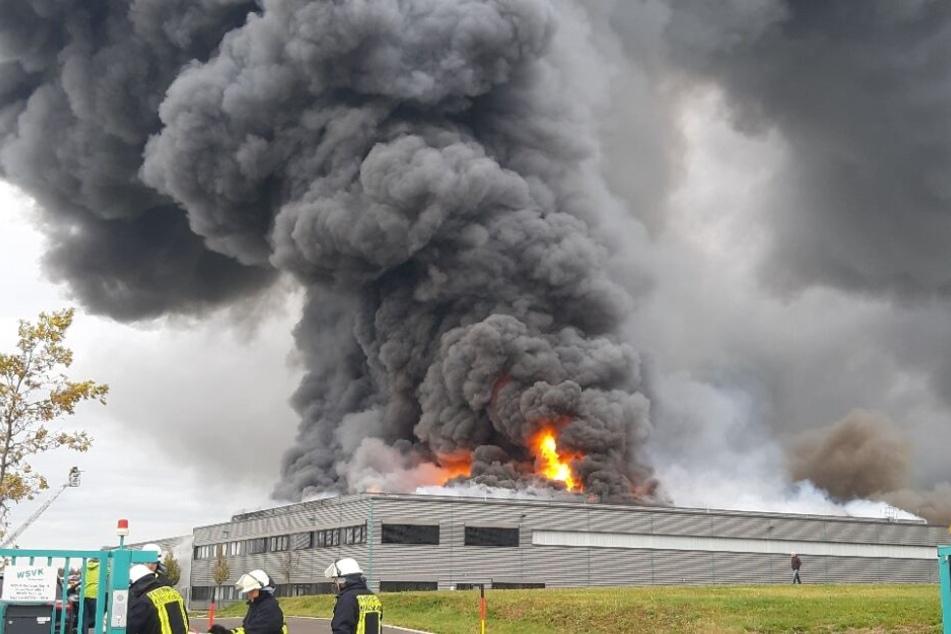 Als die Feuerwehr eintraf, brannte die Halle bereits lichterloh.