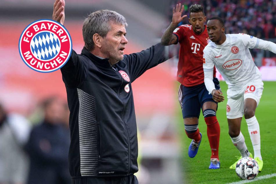 Düsseldorf-Trainer Funkel lässt kein gutes Haar an Bayern-Defensive