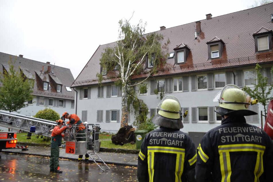 In Untertürkheim ist durch die starken Regenfälle ein Baum auf ein Hausdach gestürzt.