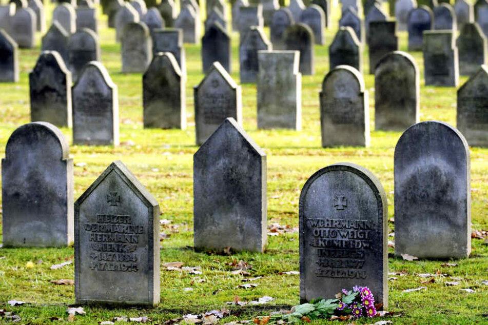 Grabsteine für getötete Soldaten des Ersten Weltkrieges auf dem Friedhof Ohlsdorf.