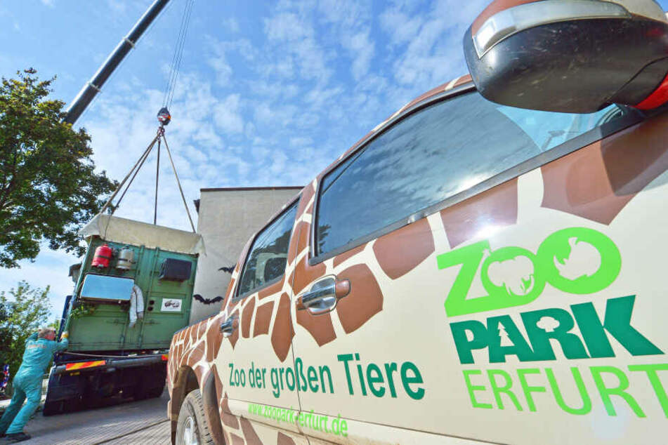 Der Erfurter Zoopark musste wegen der schweren Sturmböen schließen.