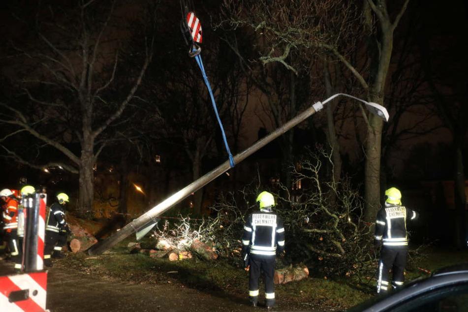 Der Baum war beim Umstürzen an einer Straßenlaterne hängen geblieben.