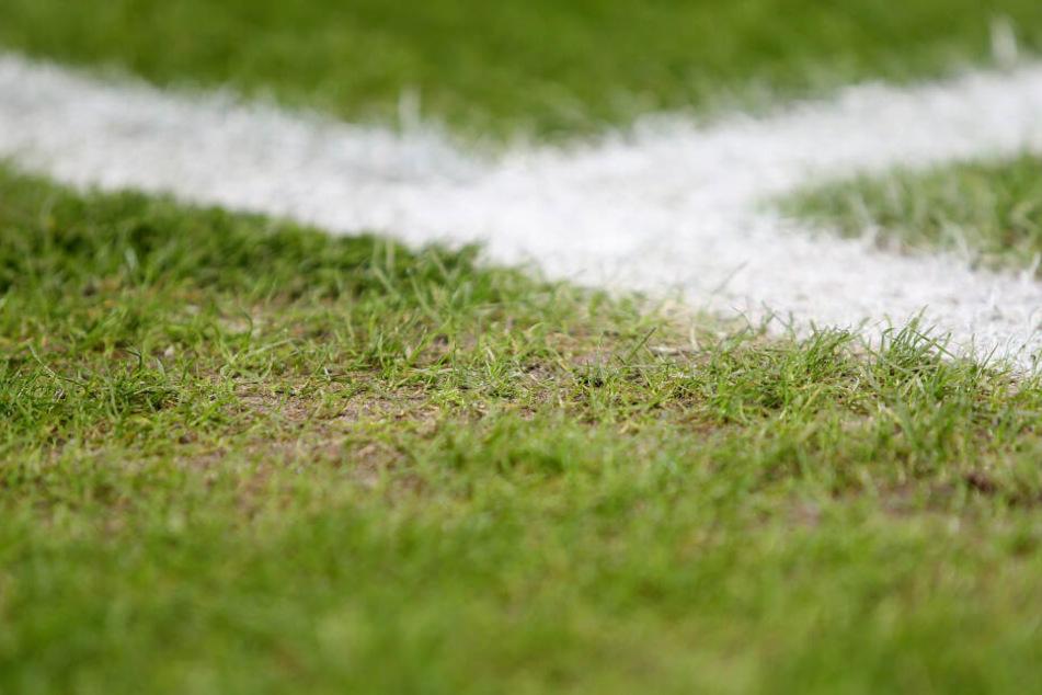 Der heilige Rasen im Olympiastadion wies in letzter Zeit herbe Mängel und Löcher auf.