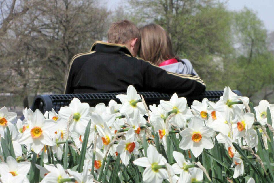 Auch der Rheinpark in Köln lädt am Oster-Wochenende zum Spaziergehen und Verweilen ein.