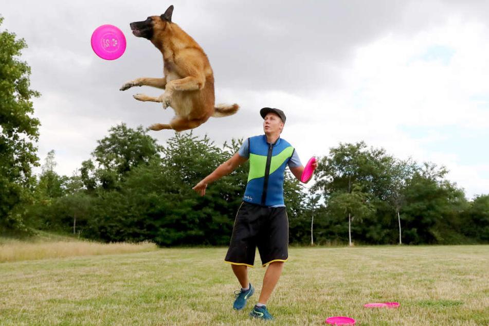 Thomas Fischer mit seinem Hund Bolle beim HundeFrisbee. Mit ihm ist er schon Europameister geworden.