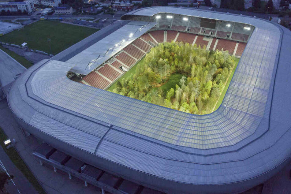 """""""For Forest"""": Darum wachsen in einem Stadion jetzt 299 Bäume"""