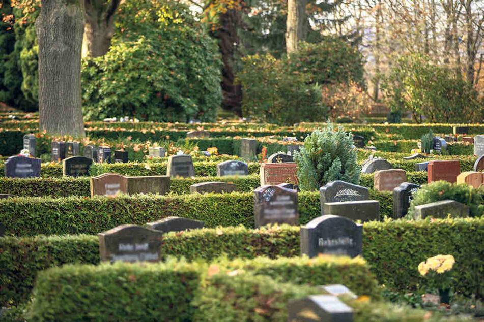 Rund 2500 Menschen wurden 2018 auf dem Städtischen Friedhof beerdigt. Der heutige Totensonntag ist den Verstorbenen gewidmet.