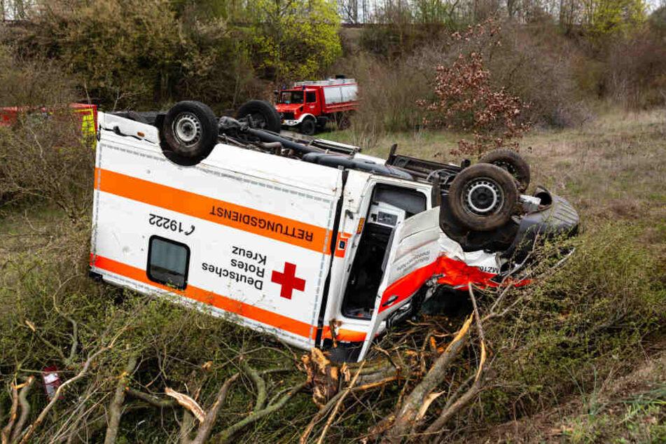 Der Krankenwagen riss bei der Unfallfahrt mehrere Bäume um.